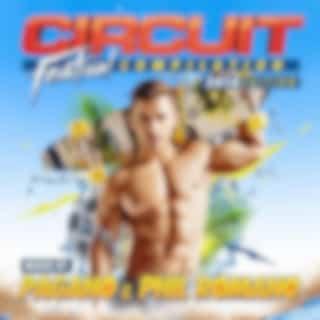 Circuit Festival Compilation 2014