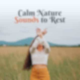 Calm Nature Sounds to Rest – Easy Listening New Age Music, Stress Relief, Peaceful Music to Calm Down, Nature Waves