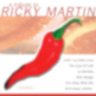 A Tribute To Ricky Martin (Coverversion)