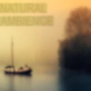 Natural Ambience