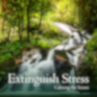 Extinguish Stress: Calming the Senses