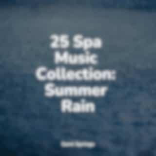 25 Spa Music Collection: Summer Rain