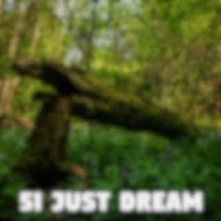 51 Just Dream