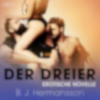 Der Dreier: Erotische Novelle
