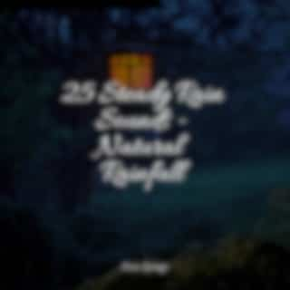 25 Steady Rain Sounds - Natural Rainfall