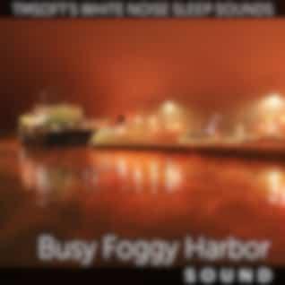 Busy Foggy Harbor