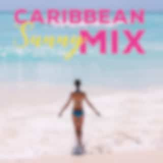 Caribbean Sunny Mix - Music at the End of the 2020 Summer Season