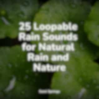 25 Loopable Rain Sounds for Natural Rain and Nature