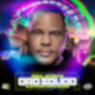 Electronic Dance Reggae