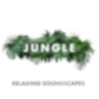 Jungle Relaxing Soundscapes – Exotix Music of Nature, Stress Relief, Calm Down
