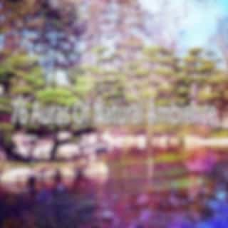 76 Auras of Natural Ambience