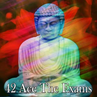 42 Ace The Exams