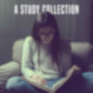 A Study Collection