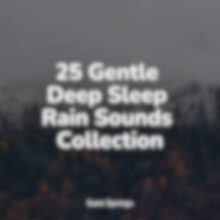 25 Gentle Deep Sleep Rain Sounds Collection