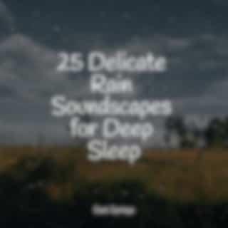 25 Delicate Rain Soundscapes for Deep Sleep