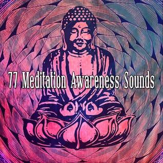 77 Meditation Awareness Sounds