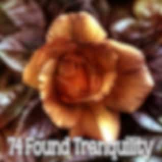 74 Found Tranquility