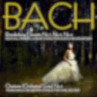 Bach: Brandenburg Concertos, No. 2, No. 3 & No. 4 & Overture (Suite) No. 3