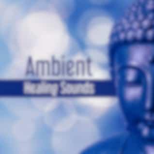 Ambient Healing Sounds – Tibetan Sounds, Buddha Meditation, Sounds to Rest, Clear Mind