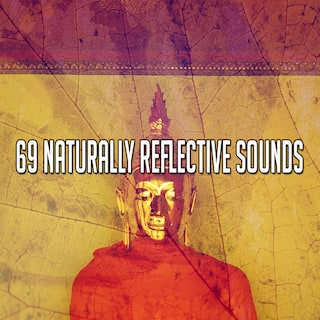 69 Naturally Reflective Sounds
