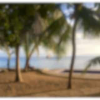 Falling Into Calmness | Natural Calm