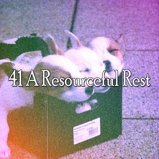 41 A Resourceful Rest