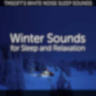 Winter Sounds for Sleep and Relaxation