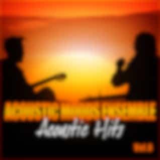 Acoustic Hits Vol. 6