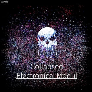 Electronical Modul
