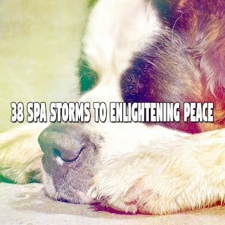 38 Spa Storms to Enlightening Peace