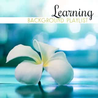 Learning Background Playlist