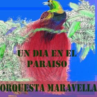 Un Dia en EL Paraiso