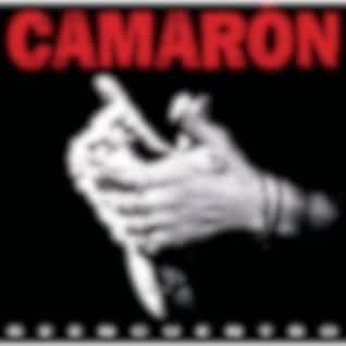 Camarón: Reencuentro
