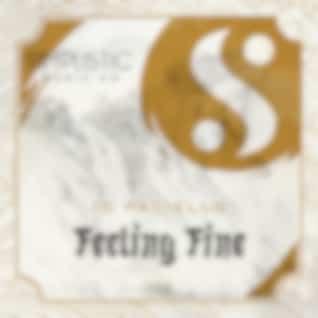 Feeling Fine (Original Mix)