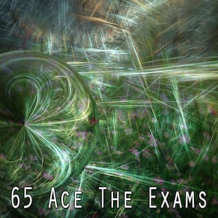 65 Ace The Exams