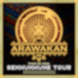 Sekhukhune Tour (Original Mix)