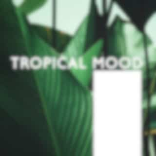 Tropical Mood – Daily Dose of Summer Electro Chill Out Vibes