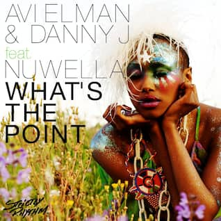 What's the Point (feat. Nuwella)