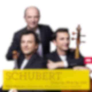 Schubert: Trios Op. 99 & Op. 100