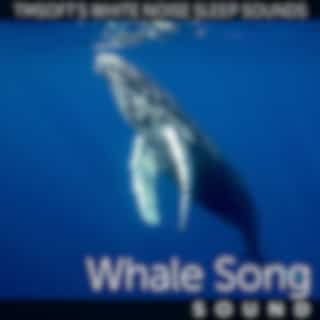 Underwater Whale Song Ambience