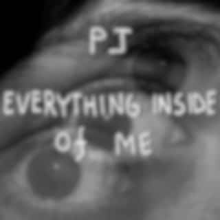 Everything Inside of Me