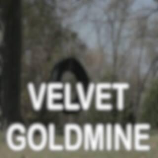 Velvet Goldmine - Tribute to David Bowie