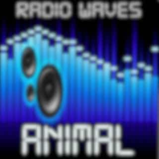 Animal (Contrast) - Tribute to Conor Maynard & Wiley