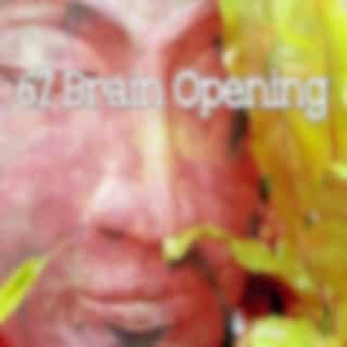 67 Brain Opening