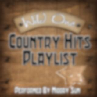 Wild One - Country Hits Playlist