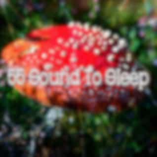 55 Sound to Sle - EP