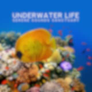Underwater Life (Serene Sounds Sanctuary, Total Calm and Harmony, Summer Chill, Top of the USA)