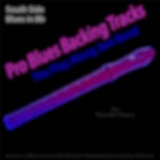 Pro Blues Backing Tracks (South Side Blues in Bb) [12 Blues Choruses] [For Recorder Players]