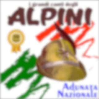 I grandi canti degli alpini: Adunata nazionale