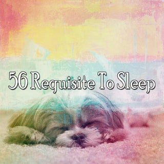 56 Requisite to Sle - EP